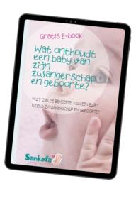 E-book over geboortepatronen